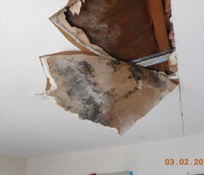 Mold Damage to Ceiling in Galloway, NJ Before