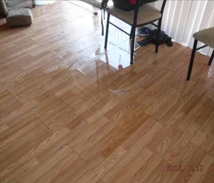 Hardwood Flooring Nj: SERVPRO Of Atlantic City / Hamilton / Hammonton Gallery Photos